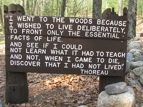character of thoreau in walden In thoreau's footsteps: my journey to walden for the bicentennial of the original de-clutterer he retreated to a cabin by a pond and wrote walden elevate his dislike of things such as cranberry farming as proof of bad character.