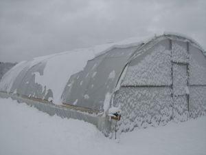 snowonhoophouse