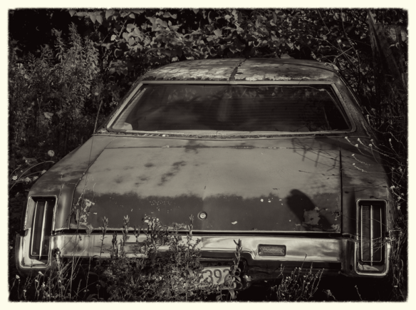 BackCar