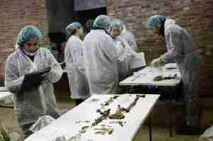 cervanted forensic team 2