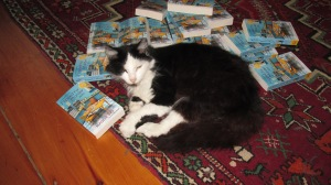 Birdy, the cat in the Country Store Mysteries - literally, in this case!