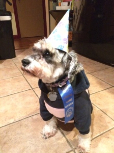 Celebrating her graduation from Canine Good Citizen class, 2015