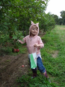 violaapplepicking