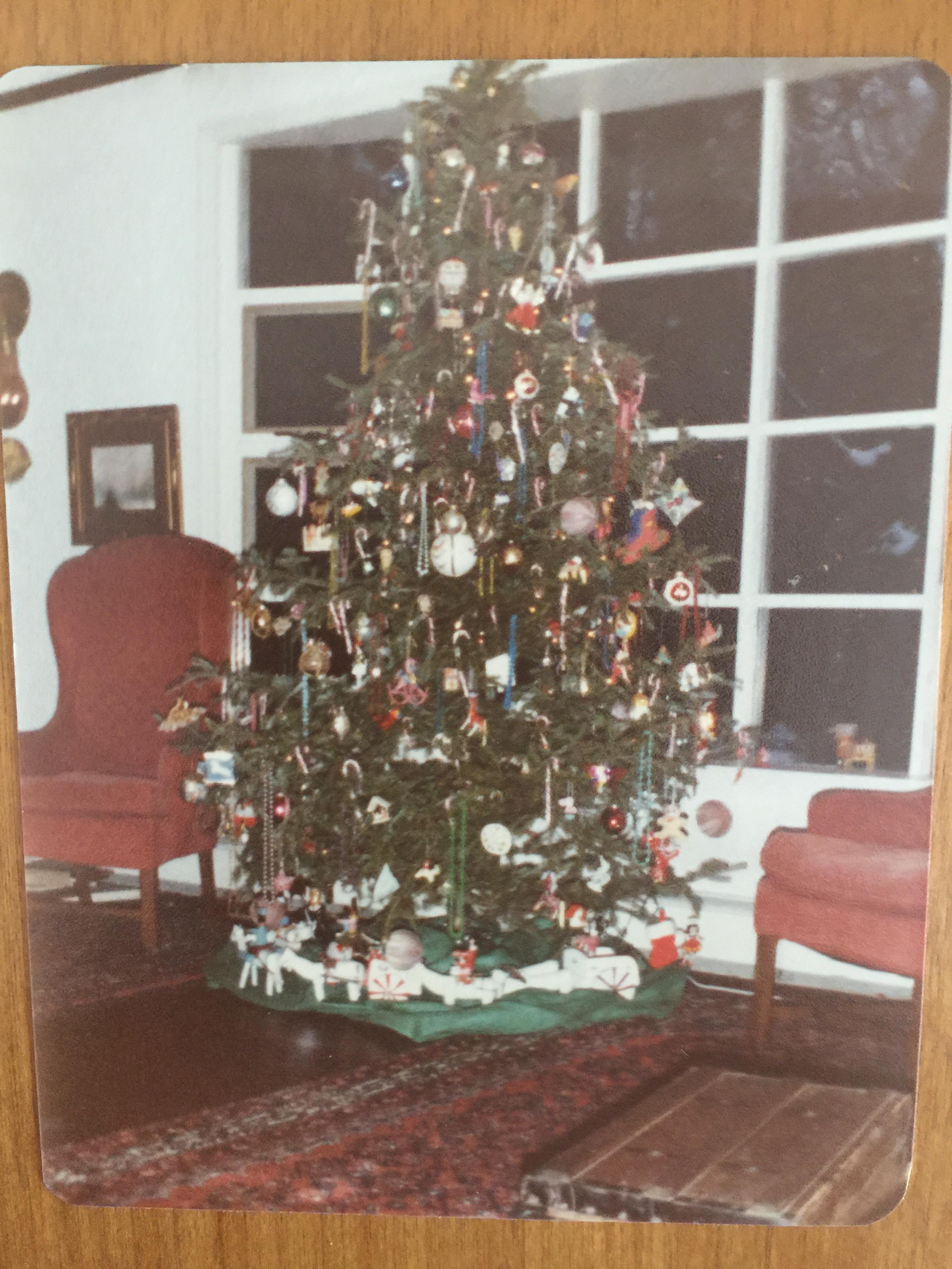 my christmas tree obsession  u2014 guest ellen byron