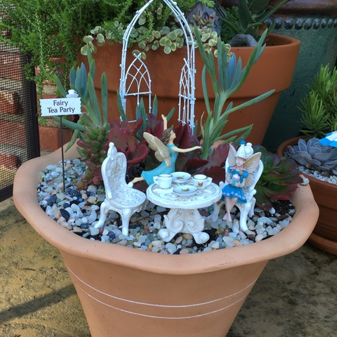 image of a Fairy Tea Party in a pot of succulents